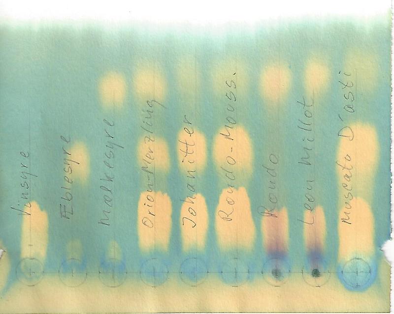 Papirkromatografi-181022_800x639